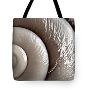 Seashell Detail Tote Bag by Elena Elisseeva