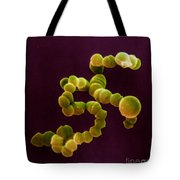 Sem Of Streptococcus Tote Bag
