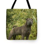 Shar Pei Dog Tote Bag