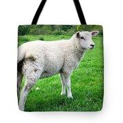 Sheep In Field Tote Bag