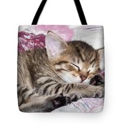 Sleeping Kitten Tote Bag