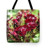 Sweet William Named Sooty Tote Bag
