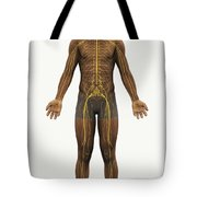 The Nerves Of The Body Tote Bag