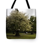 Tree With Large White Flowers Tote Bag