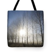 Trees On A Foggy Field Tote Bag