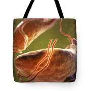 Trichomonas Vaginalis Tote Bag