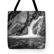 True's Brook Gorge Water Fall Tote Bag