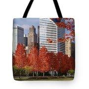 Usa, Illinois, Chicago, Millennium Tote Bag