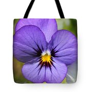 Viola Named Sorbet Blue Heaven Jump-up Tote Bag