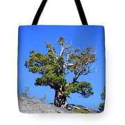 Warrior Against The Elements Tote Bag