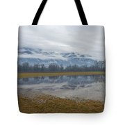 Water Puddle Tote Bag