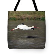 White Ibis In Flight Tote Bag