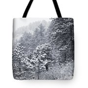 Winter In Pike National Forest Tote Bag