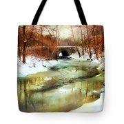Winter Waters Tote Bag