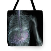 X-ray Anatomy Tote Bag