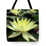 3 Yellow Lotus Tote Bag