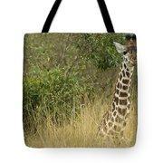 Young Giraffe In Kenya Tote Bag