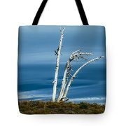 30914-37 A Harsh Climate Tote Bag