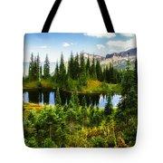 30920-55 Trailside Lake Tote Bag