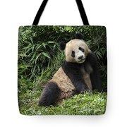 Giant Panda Tote Bag