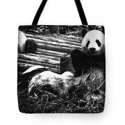 3722-panda -  Advanced Pencil Sketch Tote Bag