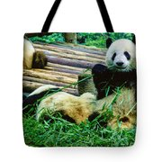3722-panda -  Colored Photo 1 Tote Bag