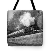 3850 At Castle Hill Tote Bag