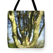 3d Urban Fever Tree Tote Bag