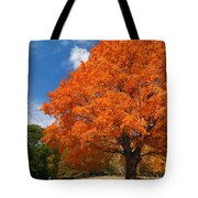A Blanket Of Fall Colors Tote Bag