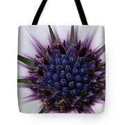 African Daisy Named Soprano White Tote Bag