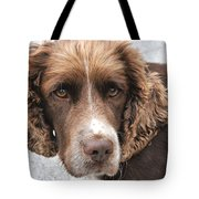 Alfi Our Dog Tote Bag