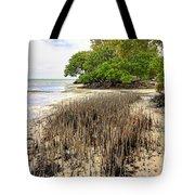 Anne's Beach-2 Tote Bag