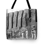 Archeologist At Work Tote Bag