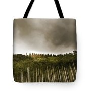 Aspen Trees In Vail Tote Bag