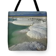 Atacama Salt Lake Near San Pedro De Tote Bag