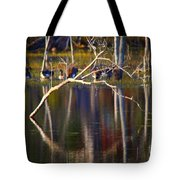 Autumn 2013 Tote Bag