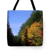 Autumn 9 Tote Bag