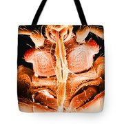 Bedbug Mouthparts, Sem Tote Bag