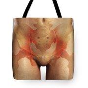 Bones Of The Pelvis Tote Bag