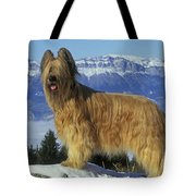Briard Dog Tote Bag by Jean-Michel Labat