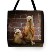4. Brick Chicks Tote Bag