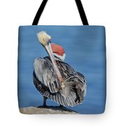 Brown Pelican Preening Tote Bag