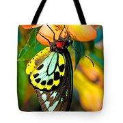 Cairns Birdwing Butterfly Tote Bag