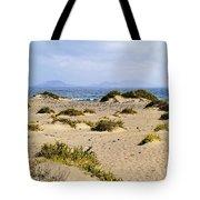 Caleta De Famara Beach On Lanzarote Tote Bag