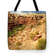 Calf Creek Falls Canyon Tote Bag
