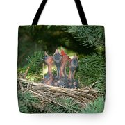 Cedar Waxwings Tote Bag by Linda Freshwaters Arndt