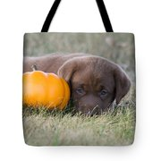 Chocolate Labrador Puppy Tote Bag