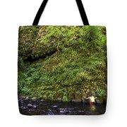 Columbia River Gorge, Oregon, Usa Tote Bag