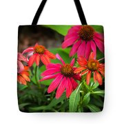 Coneflowers Echinacea Yellow Painted Tote Bag by Rich Franco