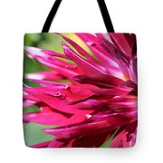 Dahlia Named Normandy Wild Willie Tote Bag